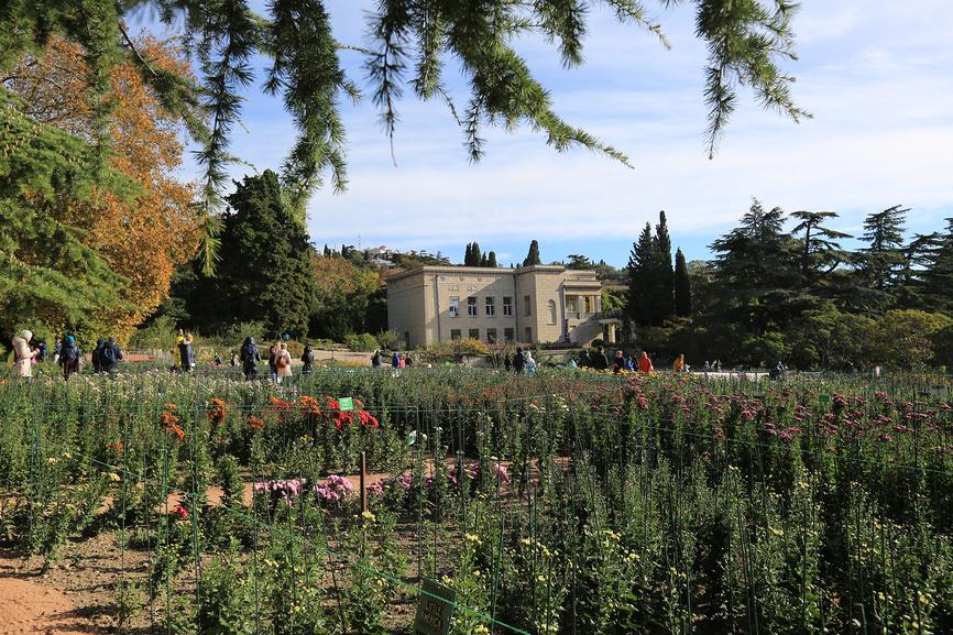 Крым. Никитский ботанический сад © Яна Королёва / Фотобанк Лори