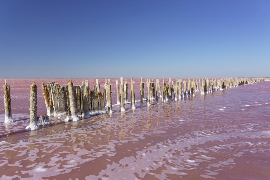 Красивое розовое озеро Сасык-Сиваш в западной части Крымского полуострова © Наталья Гармашева / Фотобанк Лори