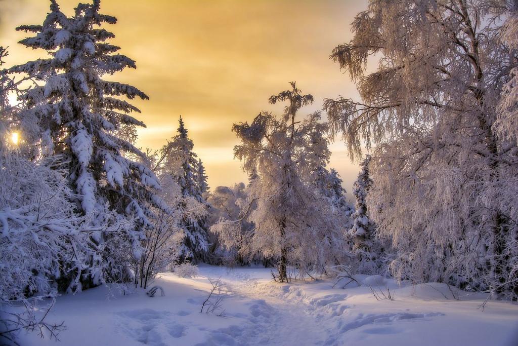 Серебро_зимнего_Таганая